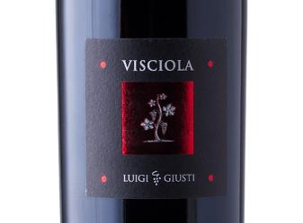 NV Luigi Giusti Visciola