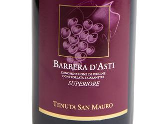 2013 San Mauro Barbera d'Asti