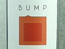2008 Bump Cellars Zinfandel