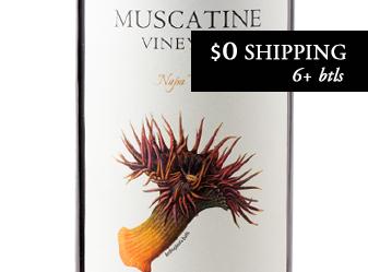 2014 Muscatine Cabernet Sauvignon