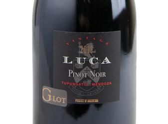 2013 Luca Pinot Noir