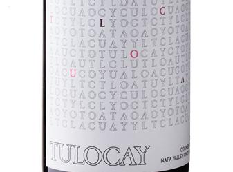 2013 Tulocay Haynes Vyd Pinot Noir