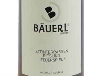 """2013 Bäuerl """"Steinterassen"""" Riesling"""