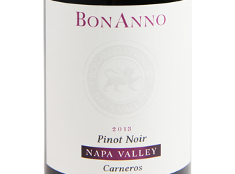 2013 BonAnno Pinot Noir