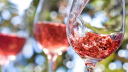 Rose Wine Club